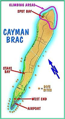 Bracmap9